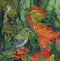 Anianiau With Orange Ohia by Wendy Roberts