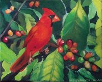 Cardinal in a Coffee Tree by Wendy Roberts