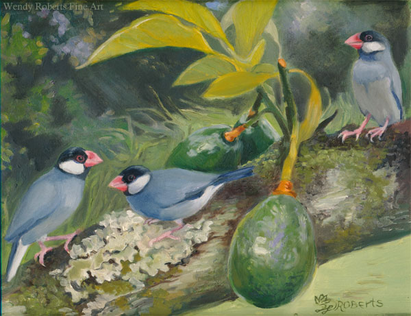 Java Sparrows in an Avocado Tree by Wendy Roberts