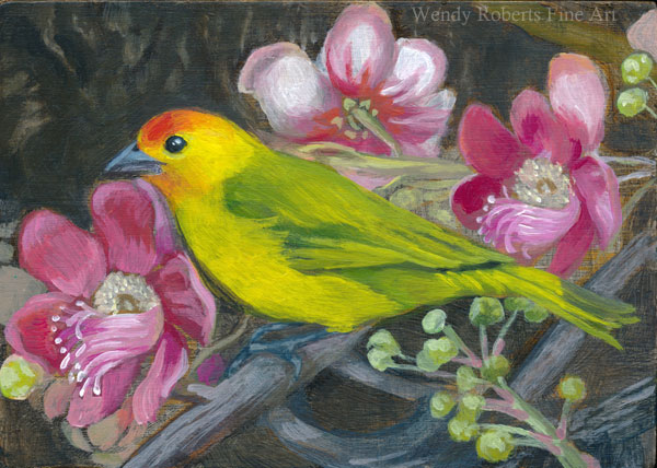 Saffron Finch In A Cannonball Tree by Wendy Roberts