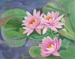 Waterlilies by Wendy Roberts