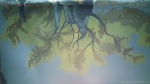 Enchanted Forest Mural, View of Ceiling from Bed