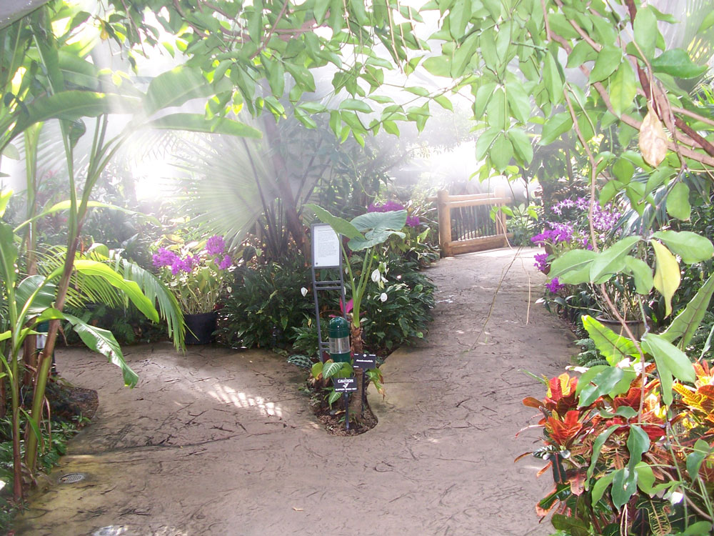 Denver Botanical Sidewalk