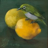 Mejiro-With-Lemons-by-Wendy-Roberts
