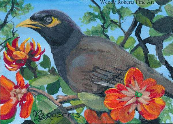 Mynah Bird in a Coral Tree by Wendy Roberts