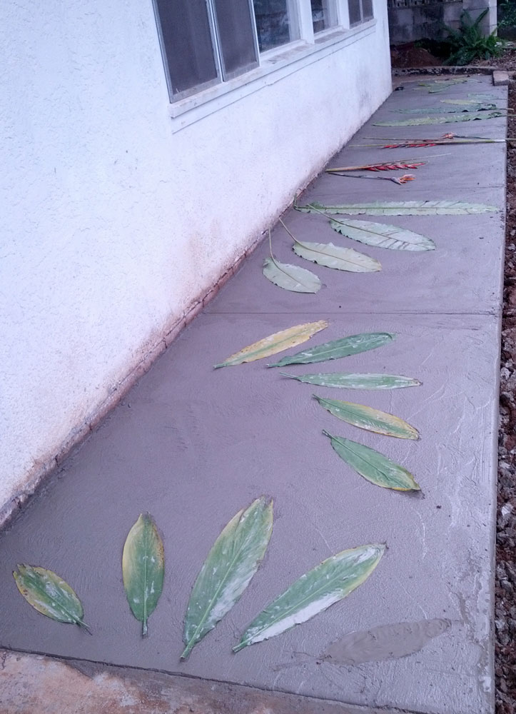 Ti leaves in cement